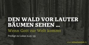 »Den Wald vor lauter Bäumen sehen« – wenn Gott zur Welt kommt …